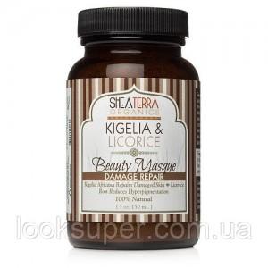 Антивозростная маска Shea Terra Organics Kigelia & Licorice Beauty Masque (Damage Repair)